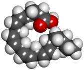 Acido Arachidonico