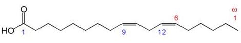 Acido acidodiomogamma-linolenico (DGLA)