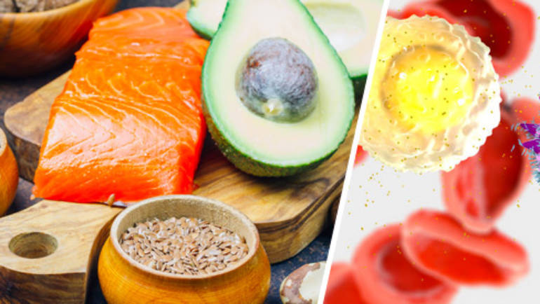 Omega-3 allies of the immune system