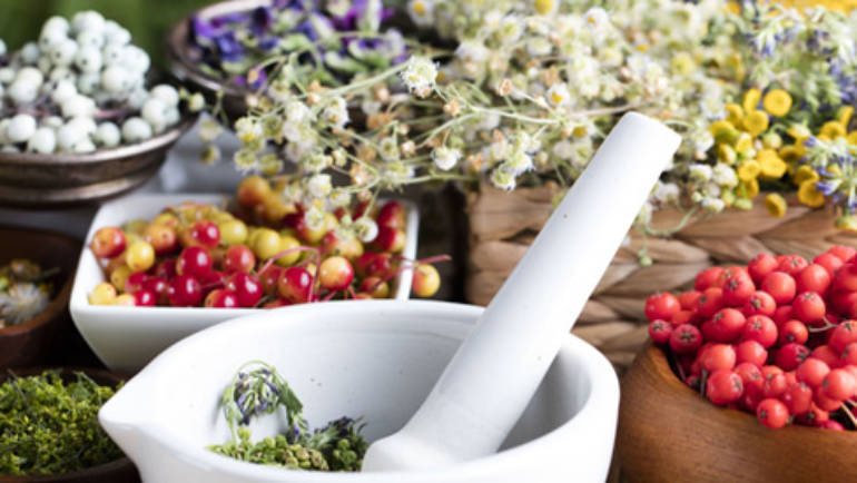 Allergies and phytotherapy