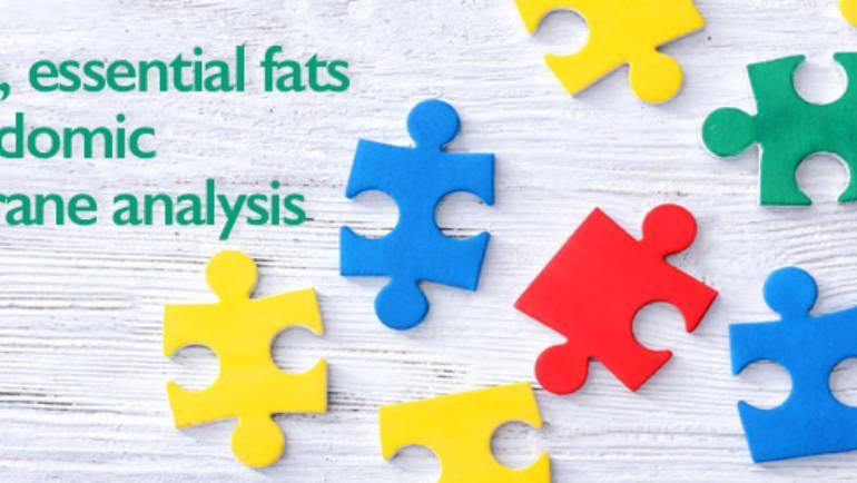Autism, essential fats and lipidomic membrane analysis