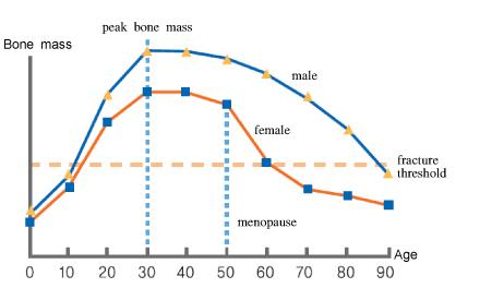 grafico decadimento osseo
