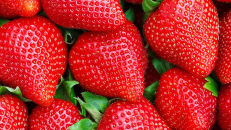 Strawberries: beneficial health allies