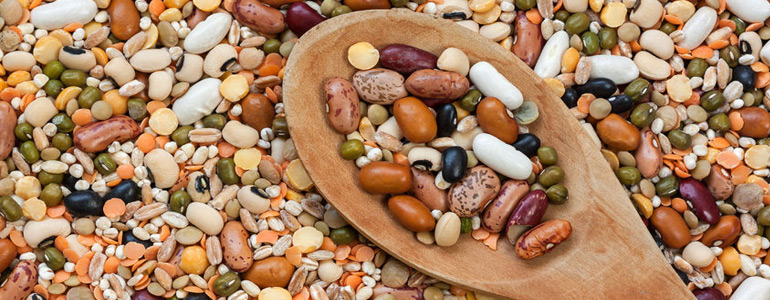 Legumes: rich in nutrients and fibers