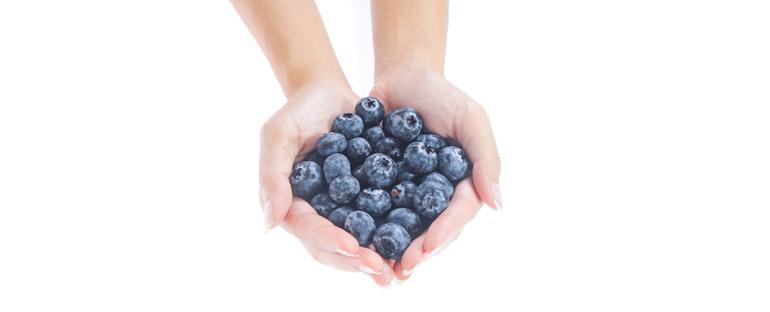 Alimenti funzionali: il mirtillo e i suoi polifenoli