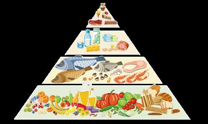 piramide-alimentare-linea-nutrizionale