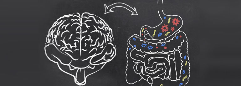 "The psychobiotic ""revolution"", mental well-being starts from the intestinal microbiota"