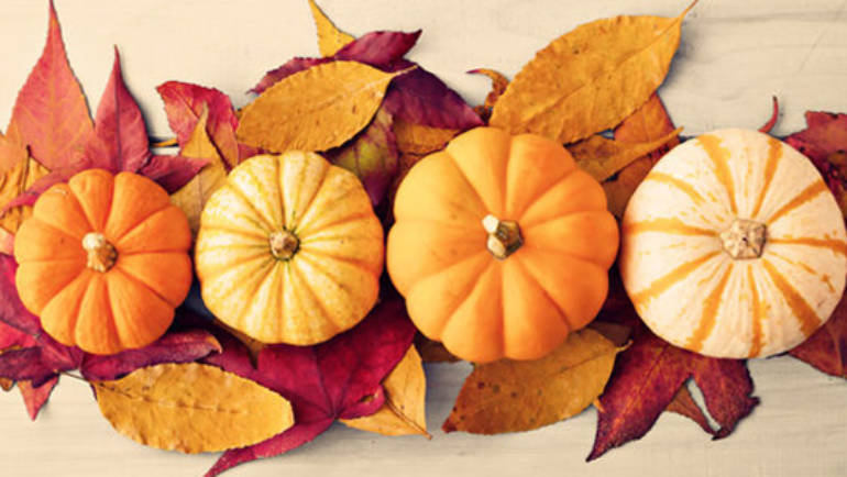 Pumpkin secrets, typical autumn food